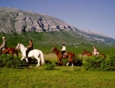 Horses Riding Dalmatia Croatia Trip
